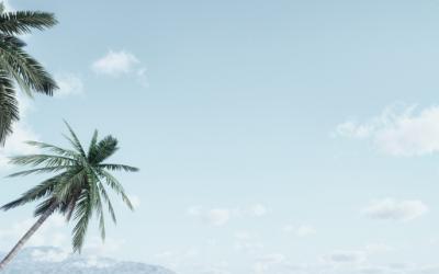Séminaire Ile de la Réunion 2021